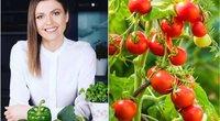 Neskubėkite griebtis papildų: naudingų vitaminų galite rasti šiose daržovėse (tv3.lt fotomontažas)