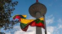 Lietuvos vėliava, trispalvė (nuotr. Fotodiena/Justino Auškelio)