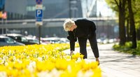 Kaunas pasirūpino ryškiu fonu asmenukėms: miestą papuošė tūkstančiai įvairiaspalvių gėlių (nuotr. Kauno savivaldybės)