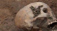 Kaukolė (nuotr. stop kadras)