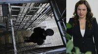 Teisingumo ministrė ėmėsi Kauno tardymo izoliatoriaus (TV3 koliažas) (nuotr. Fotodiena.lt)