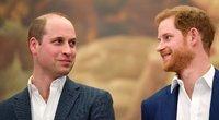 Princas Williamas ir Harry (nuotr. SCANPIX)
