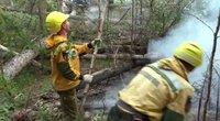 Sibire siaučia gaisras (nuotr. stop kadras)