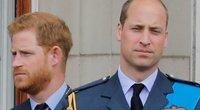 Meghan Markle, princas Harry ir princas Williamas (nuotr. SCANPIX)