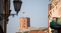 Vilniaus Gedimino bokštas (nuotr. Fotodiena/Justinas Auškelis)