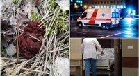 Gamtininkas įspėja: bobausių vartojimas gali baigtis net mirtimi (tv3.lt fotomontažas)