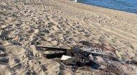 Pajūryje vasaros išvakarėse siautėjo vandalai: šįkart sudegino suoliuką (nuotr. facebook.com)