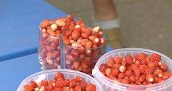 Medikai ragina mėgautis žemuogių sezonu, bet jų kainos – kandžiojasi