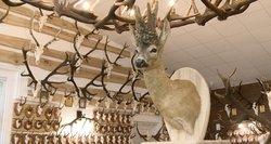 Rokiškėnas stebina įspūdinga medžioklės trofėjų kolekcija: rinko net 50 metų