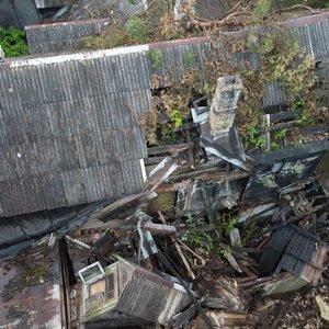 Vilniuje ant namo užgriuvo medis: pranešta, kad viduje gali būti žmonių