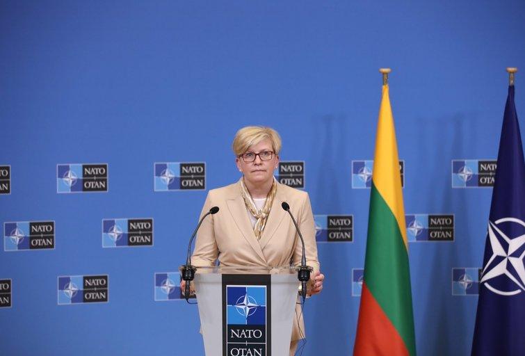 I. Šimonytė susitiko su NATO generaliniu sekretoriumi J. Stoltenbergu