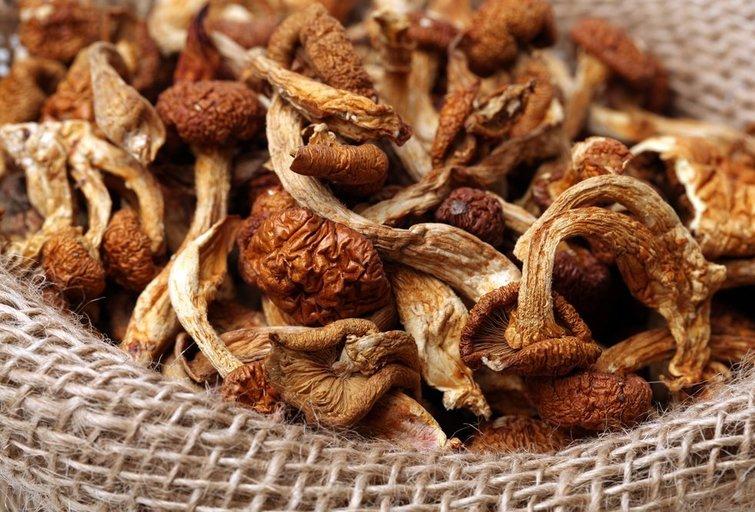 Džiovinti grybai (nuotr. Shutterstock.com)