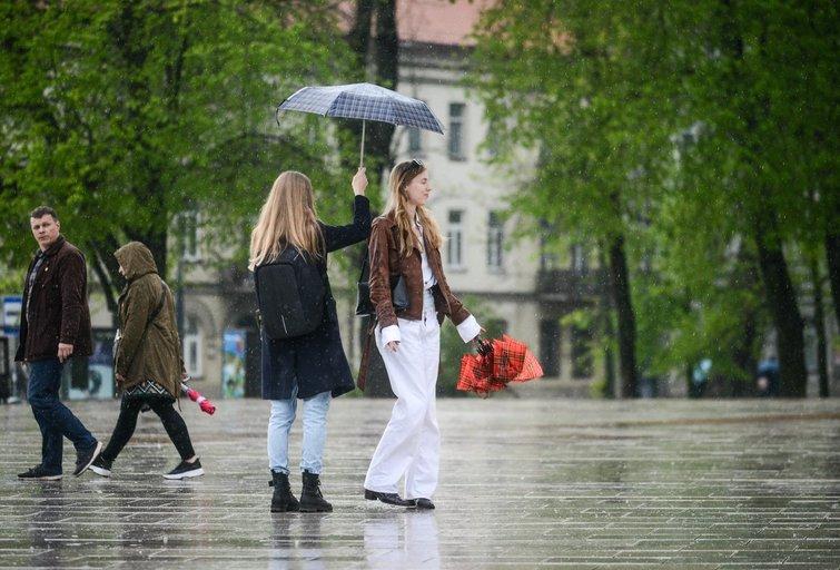 Lietus (K. Polubinska/fotodiena.lt nuotr.)