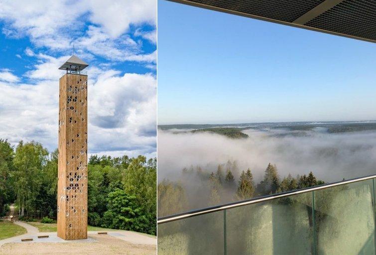 Birštono apžvalgos bokštas (tv3.lt fotomontažas)