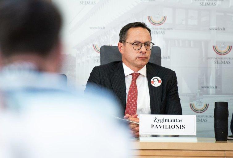 Spaudos konferencija apie padėtį Baltarusijoje (nuotr. Fotodiena/Justino Auškelio)