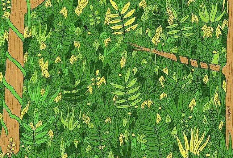 Ar sugebėsite rasti gyvatę?