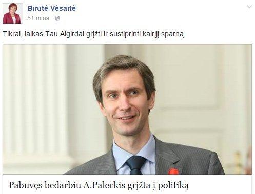 B. Vėsaitė kviečia A. Paleckį prisijungti prie LSDP (nuotr. facebook.com)