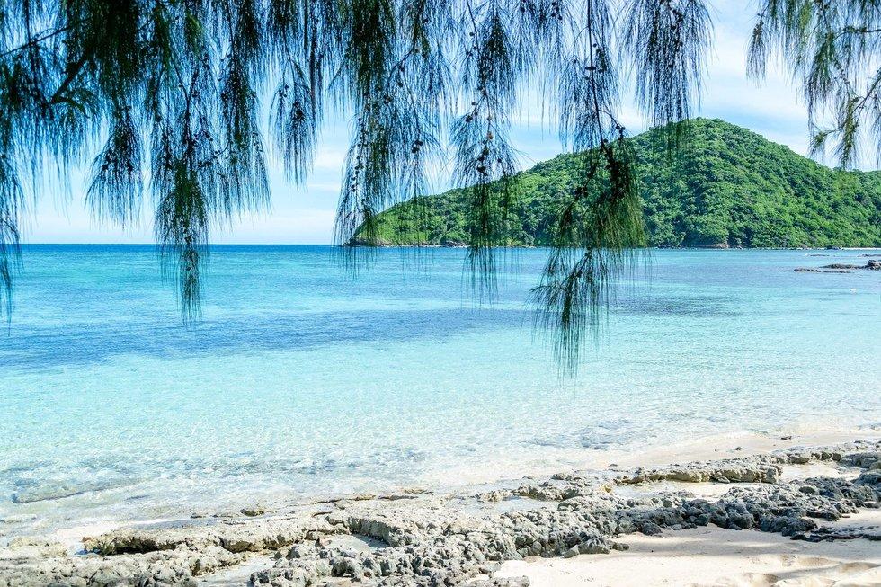 Fidžio Salų Respublika (Fidžis)