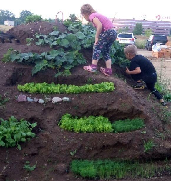 Nesulaukusi, kada sklypo kėlimo darbai bus baigti, Inesa su vaikais daržoves pasėjo į žemės kaupą (nuotr. valstietis.lt)