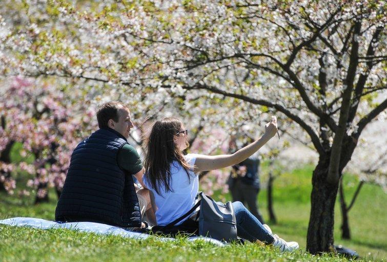 Pavasaris (Fotodiena/ Viltė Domkutė)