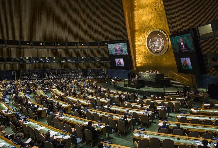 Jungtinės Tautos (nuotr. 123rf.com)