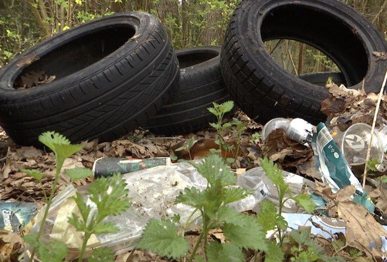 Šiukšlininkams ruošiamas apynasris: už išpiltas atliekas miške ne tik bauda (nuotr. stop kadras)