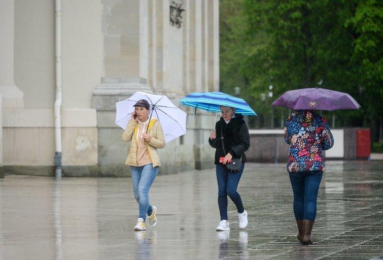 Orai, lietus (K. Polubinska/fotodiena.lt nuotr.)