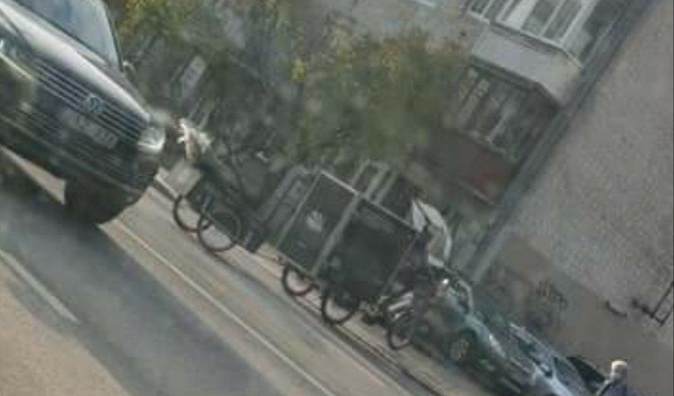 Rikšos Vilniaus gatvėse