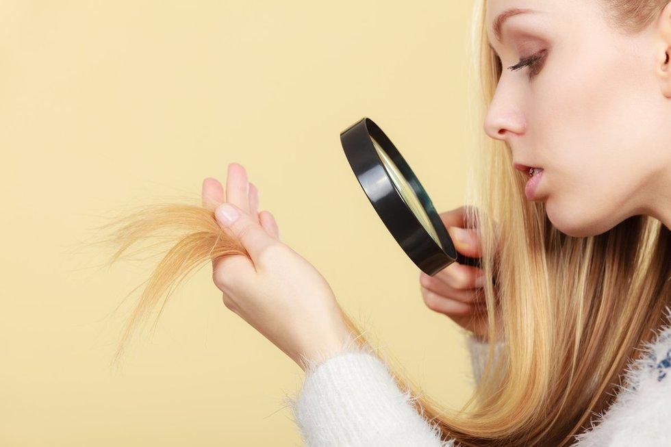 Išsausėję plaukai (nuotr. Fotolia.com)