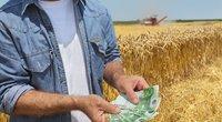 Ūkininkai norėtų lengviau įdarbinti užsieniečius (nuotr. 123rf.com)