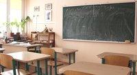Gripas mokyklose (nuotr. TV3)
