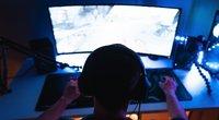 Žaidimų transliavimo platforma  (nuotr. Shutterstock.com)