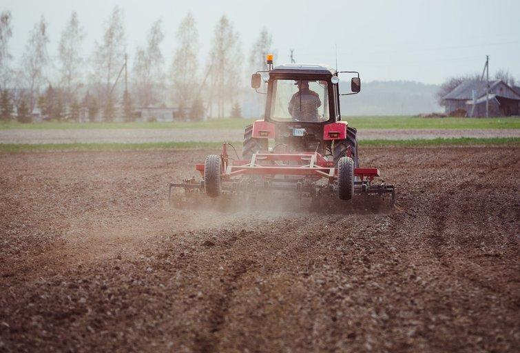 Gausios liūtys užtvindė laukus: ūkininkai įspūdingo derliaus neprognozuoja (Andrius Ufartas/Fotobankas)