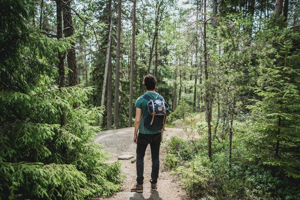 Pasivaikščiojimas miške