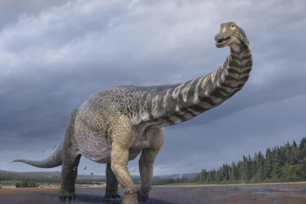 Australai aptiko prieš 100 milijonų metų gyvenusį milžiniško dydžio dinozaurą (nuotr. stop kadras)