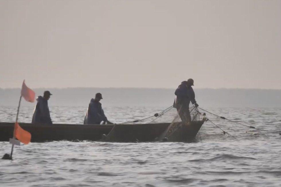 Gamtos saugotojus žvejai apmėtė žuvimi: tuo metu jie buvo sugavę daug neleistino dydžio starkiukų (nuotr. stop kadras)