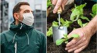 Kaunietis perspėja dirbančius sode: ragina pasimokyti iš jo klaidos (tv3.lt fotomontažas)