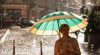 Vasaros lietus (nuotr. Fotodiena/Justino Auškelio)