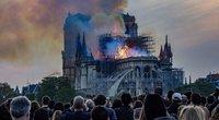 Ekspertė: Paryžiaus Dievo Motinos katedros atstatymui prireiks šimtmečio (nuotr. SCANPIX)