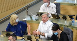 Seimas nutarė dėl migrantų teisių: dalį sprendimų pavadino neadekvačiais