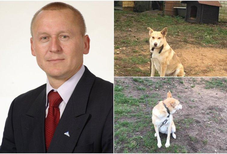 Petras Čimbaras ir kaimynystėje gyvenantis šuo (nuotr. asm. archyvo)