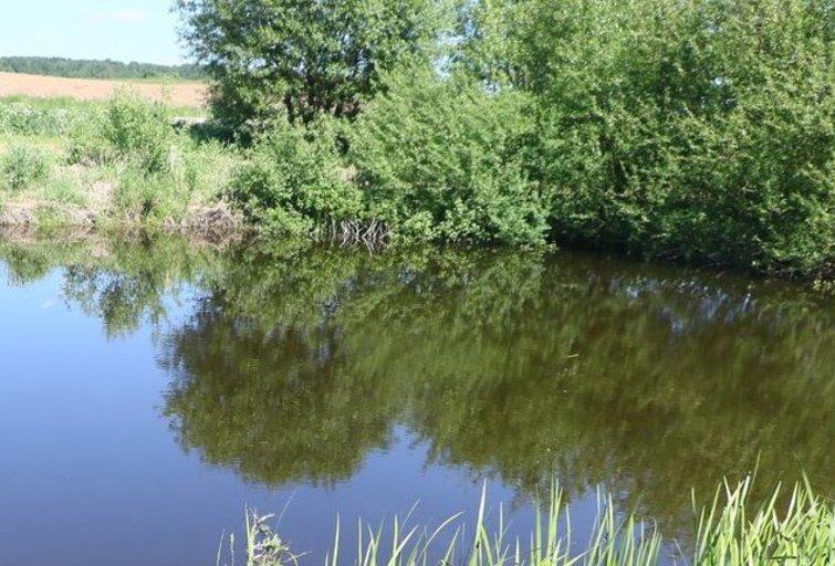 Vandens telkinys. Asociatyvi nuotrauka (nuotr. Broniaus Jablonsko)