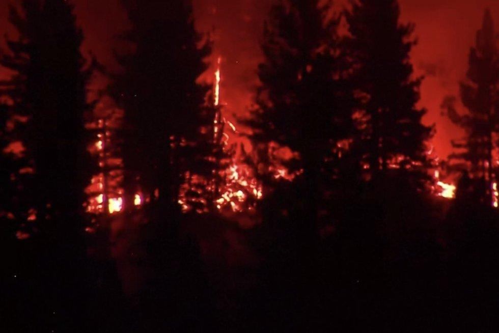 Jungtines Valstijas siaubia gaisrai: liepsnų nepavyksta sutramdyti jau dvi savaites (nuotr. stop kadras)