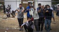 Alytaus rajone paspruko grupė migrantų  (tv3.lt fotomontažas)