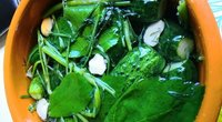Silpnai rauginti agurkai (nuotr. vakavimas.lt)