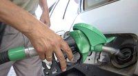Aplinkos ministerija skelbia karą taršiems automobiliams: užsimojo sulyginti dyzelino ir benzino kainas (nuotr. stop kadras)