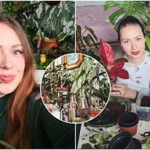 Vilnietės dviejų kambarių bute – 150 augalų: turi patarimų kitiems