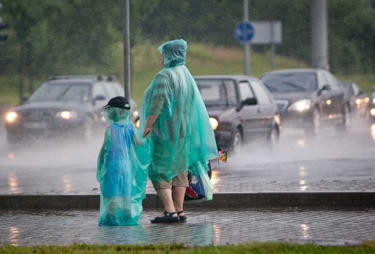 Lietus, liūtis Šarūnas Mažeika/FOTOBANKAS nuotr.