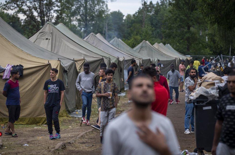 Migrantai Rūdninkuose