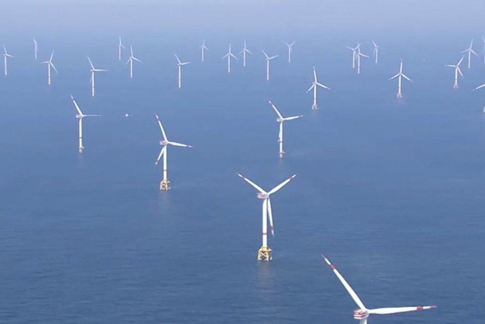 Lietuva Baltijos jūroje planuoja statyti galingą vėjo elektrinių parką (nuotr. stop kadras)